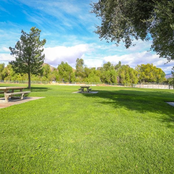 Picnic tables in a bright green lawn
