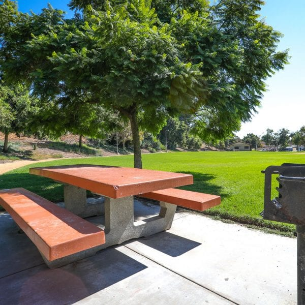 Picnic table with trees nearbyc
