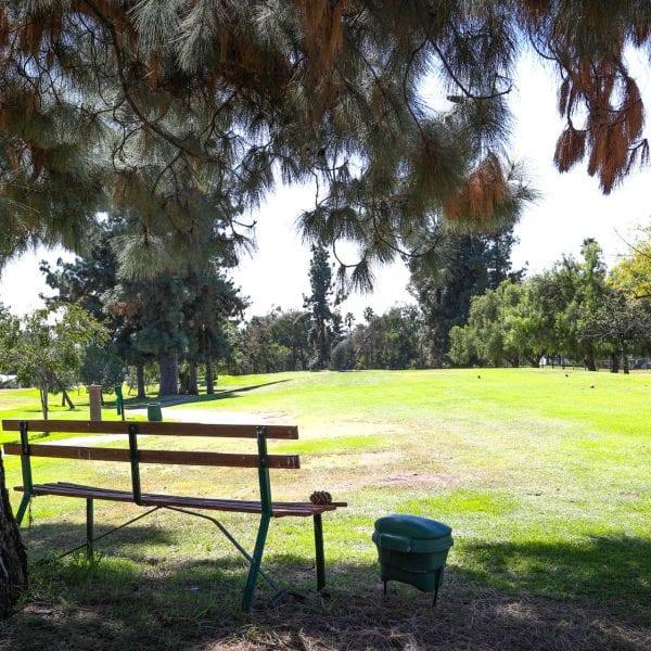 Bench overlooking an open grass field