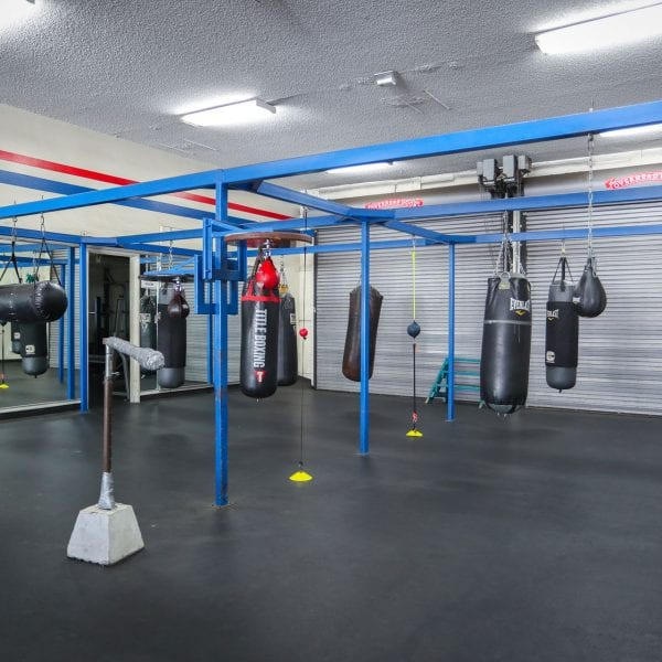 Punching bags in the gym 4