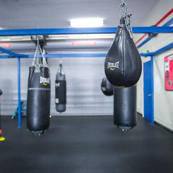 Punching bags in the gym 3