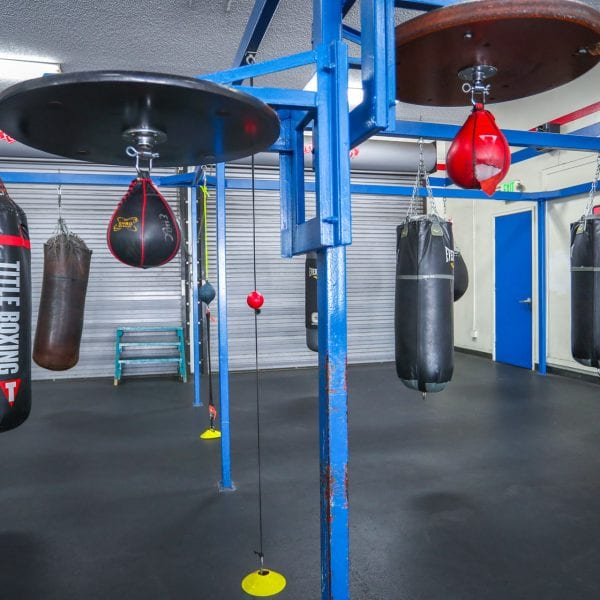Punching bags in the gym 1