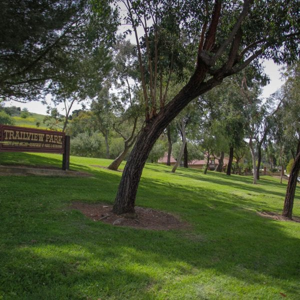 Trailview Park sign and trees