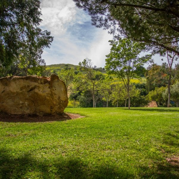 Big rock surrounded by grass