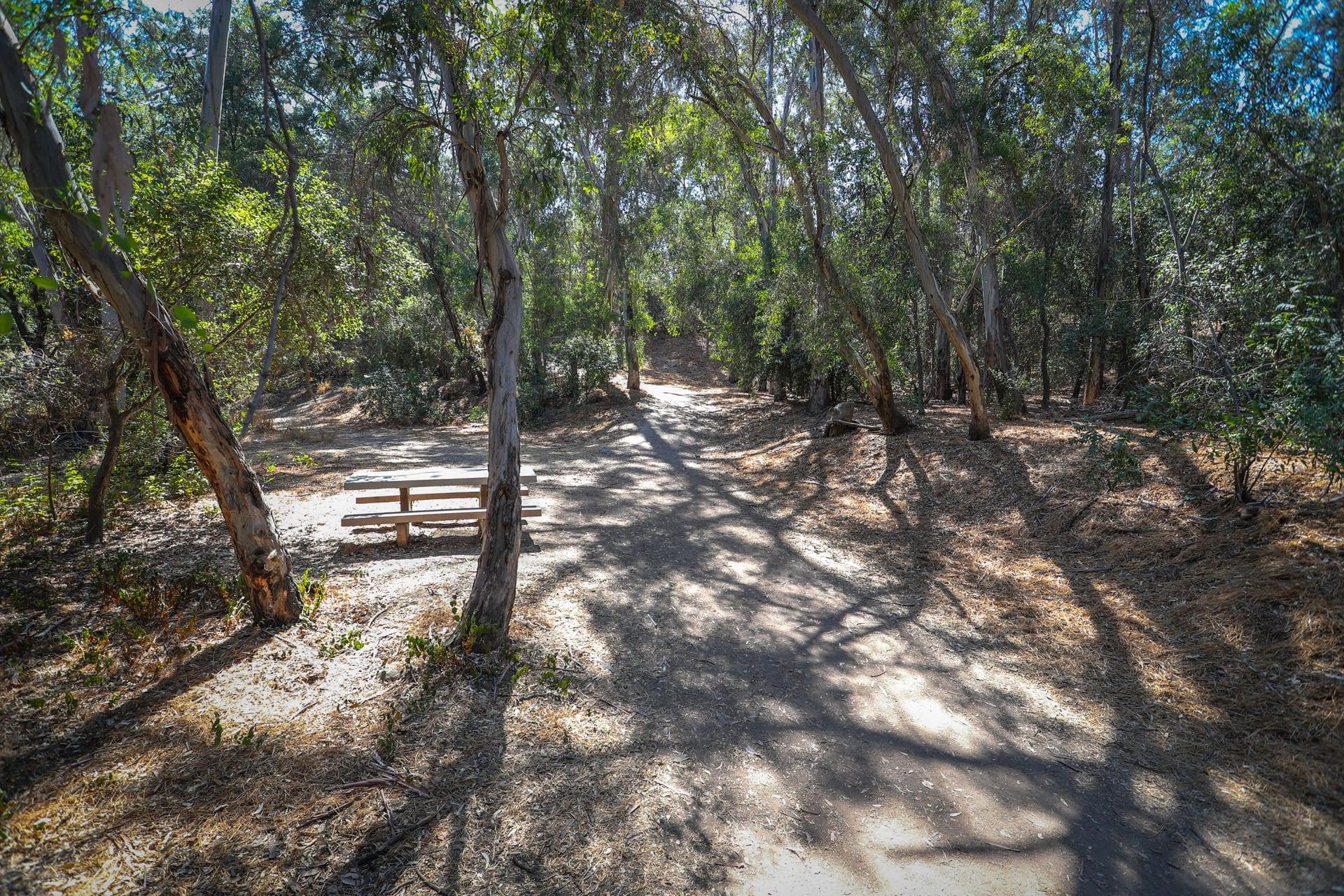 Walnut Creek Community Regional Park Parks Recreation