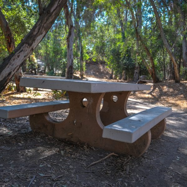 Adobe picnic table next to shaded dirt path