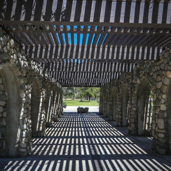 A canopy walkway