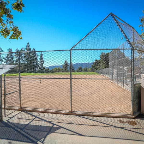 Baseball net and field