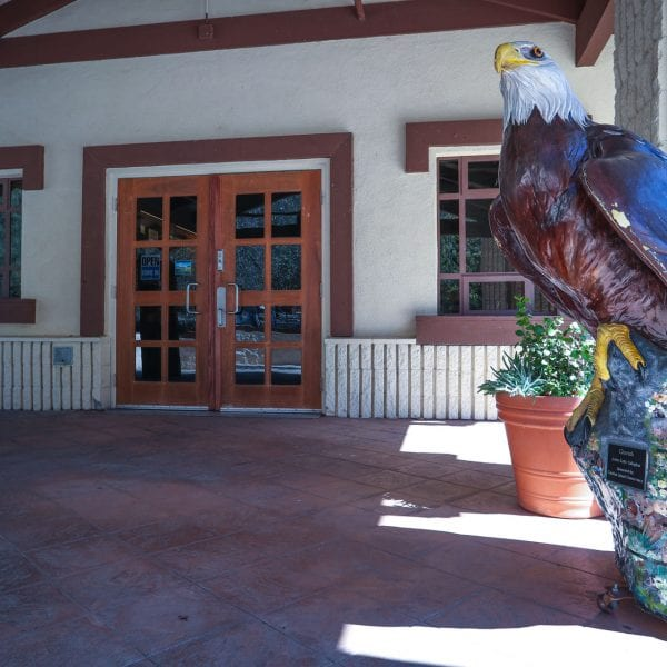 Statue of bald eagle in front of nature center