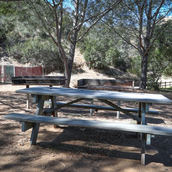 Picnic table and BBQ grills amongst trees