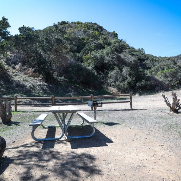 Picnic table and BBQ grill. Fence and trail behind