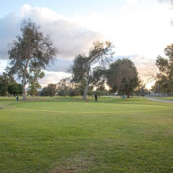 Chester Washington Golf Course grass