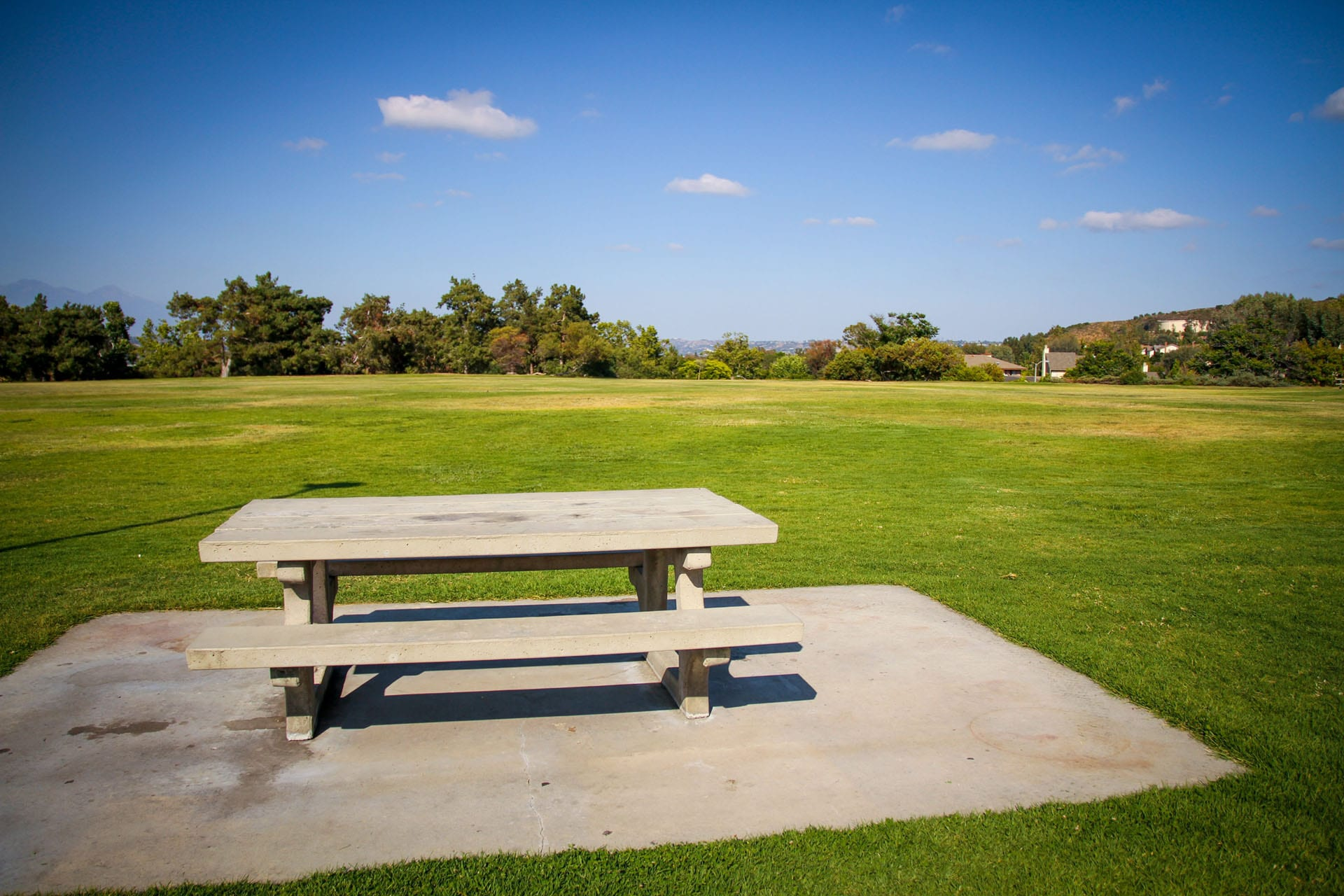 Picnic table on the grass