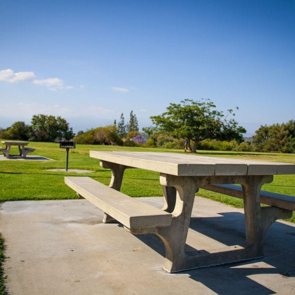Picnic tables and a BBQ grill