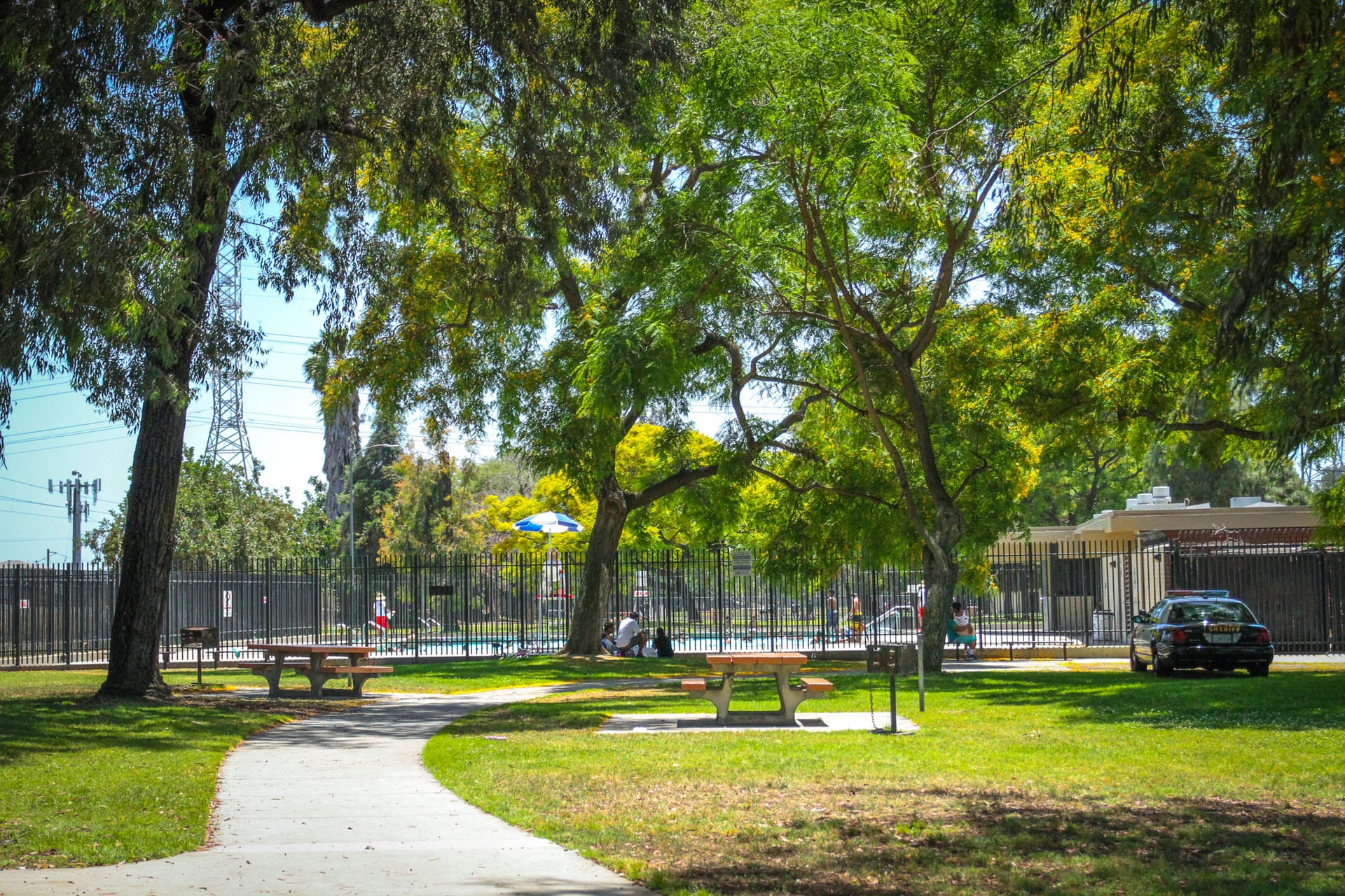 Picnic tables surrounded by trees