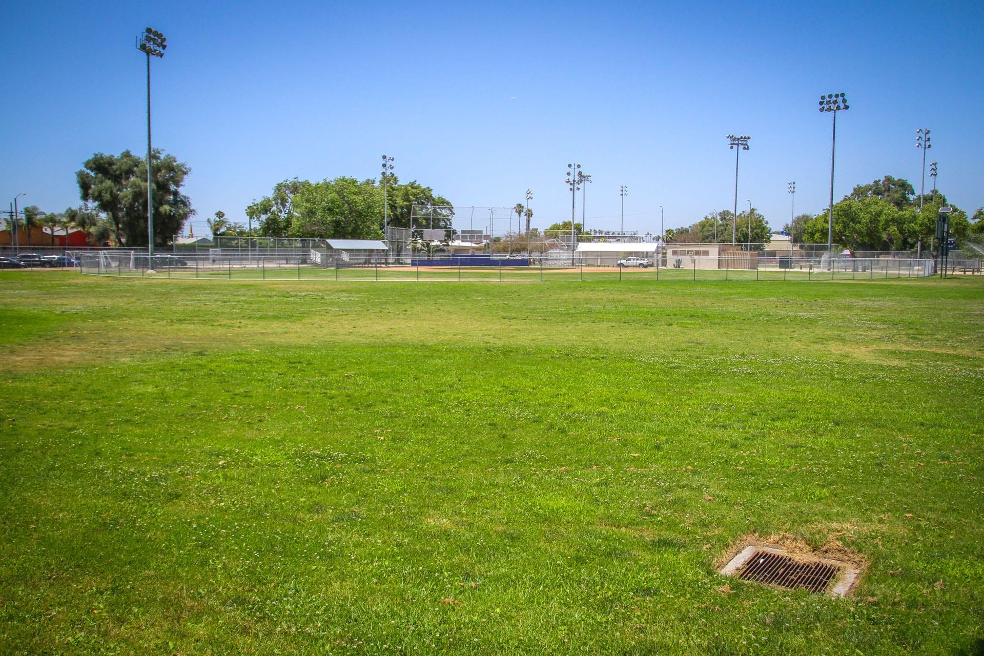 Grass area outside of baseball field