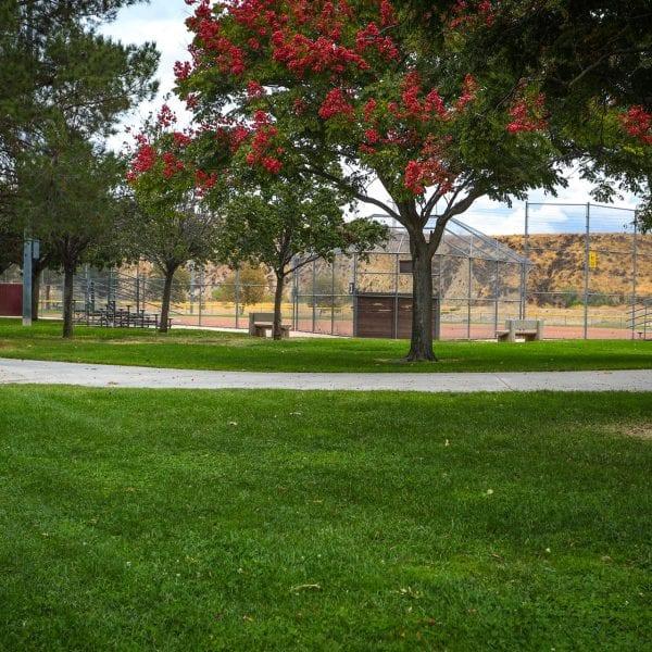 Concrete path through grass behind the baseball net