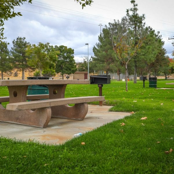 Picnic tables and BBQ grills