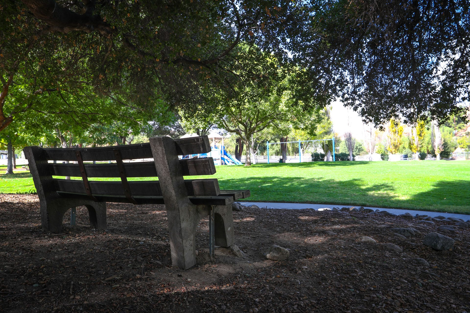 Bench next to walkway and park