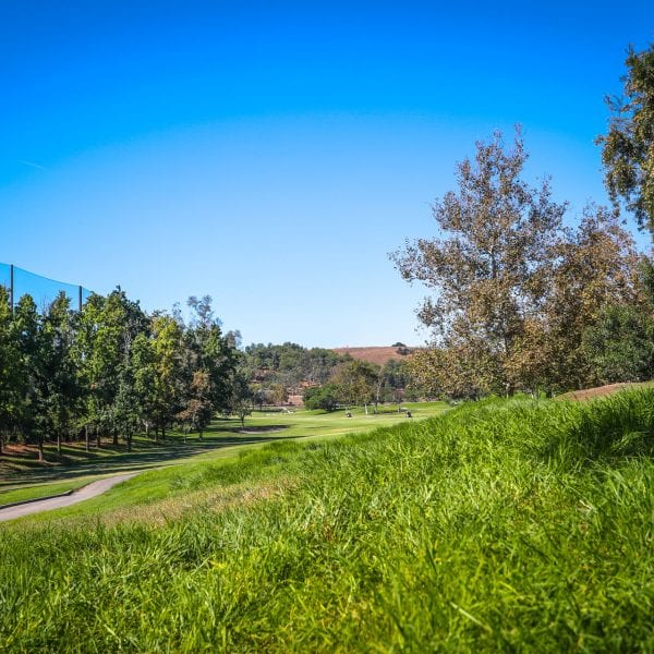 An abstract picture of Mountain Meadows Golf Course.