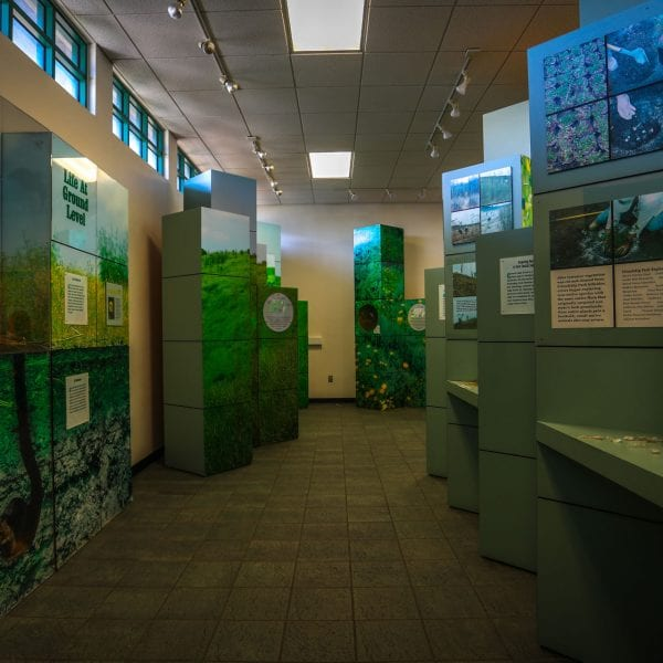 Inner view of exhibits