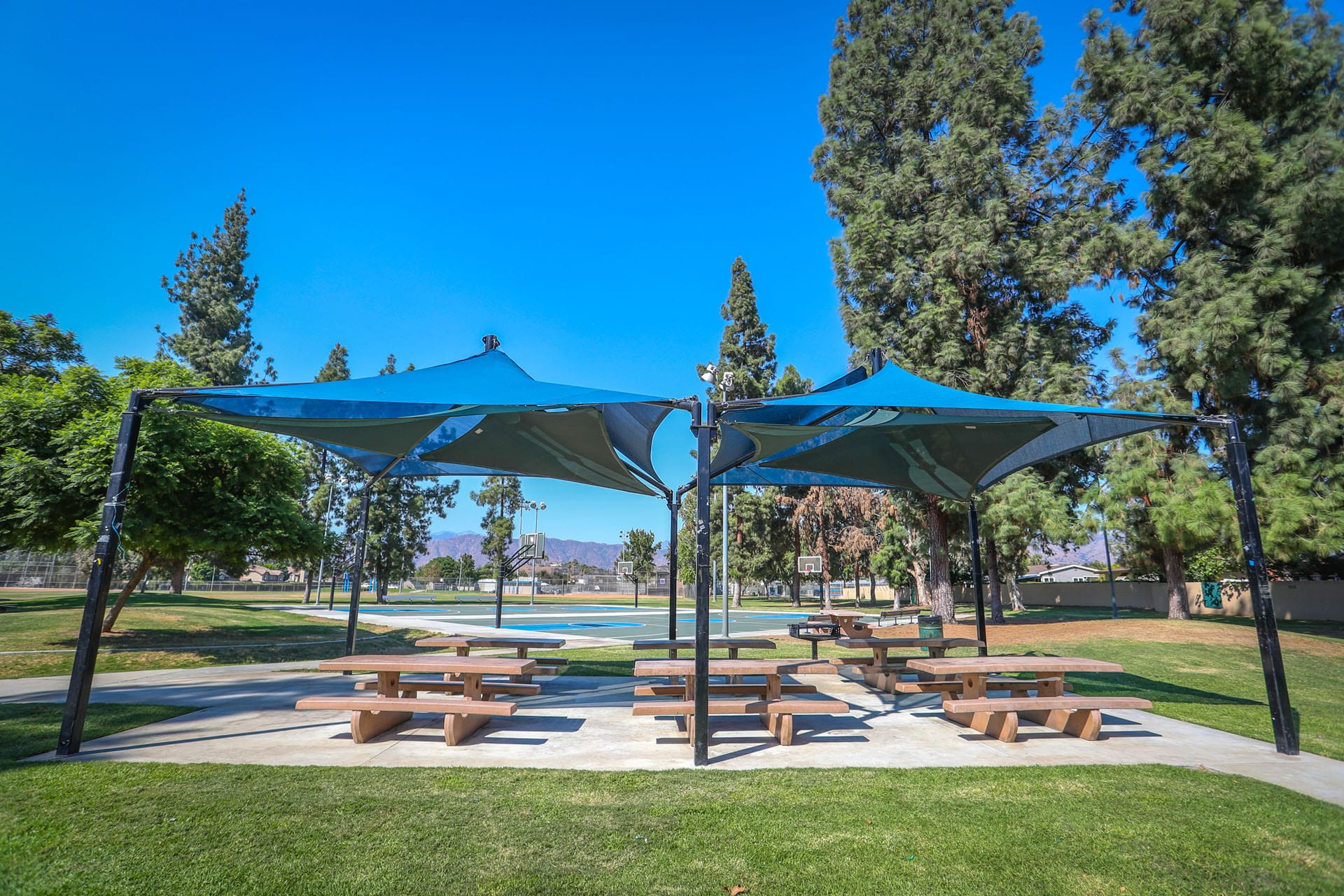 Tents over picnic tables