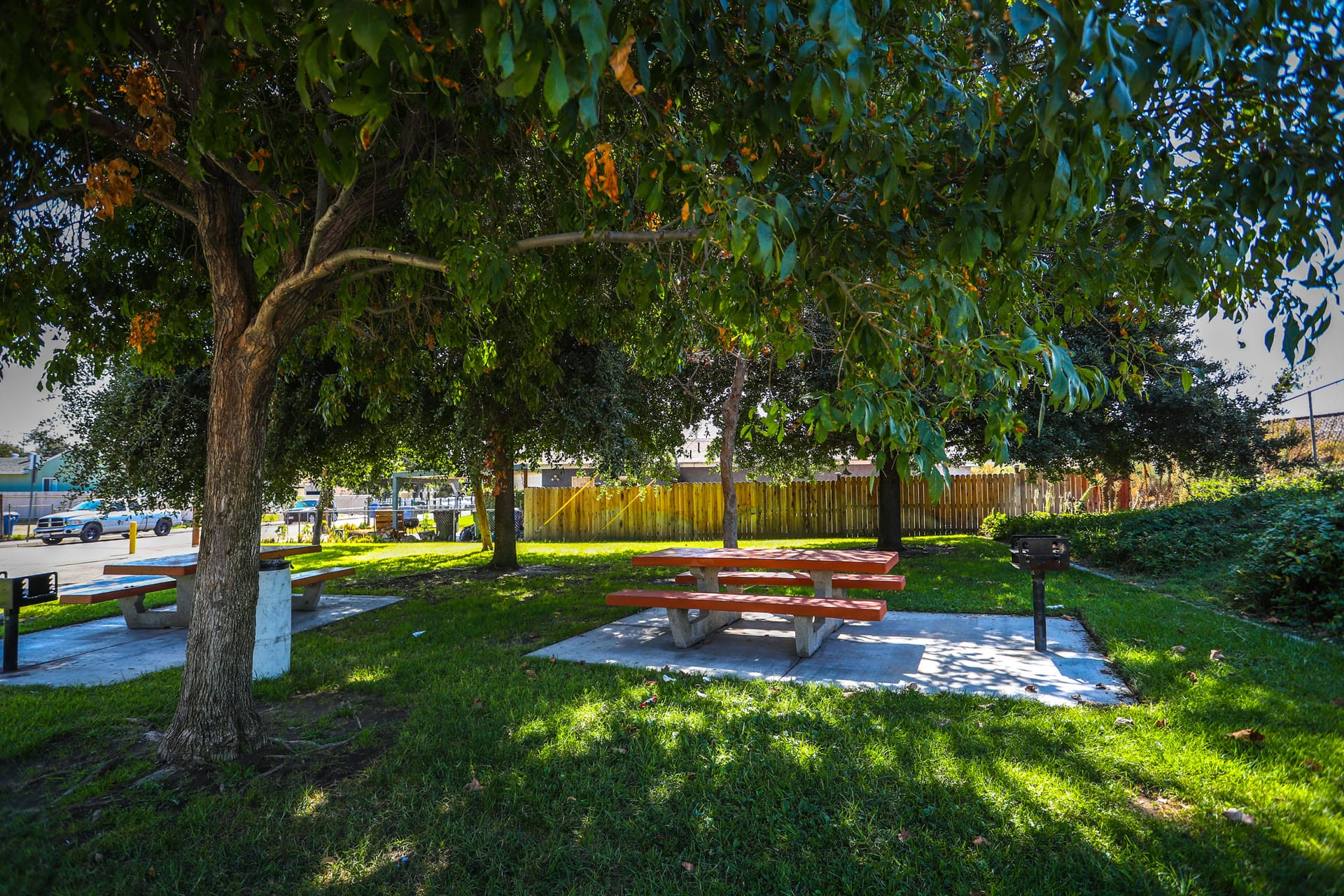Picnic table shaded by trees