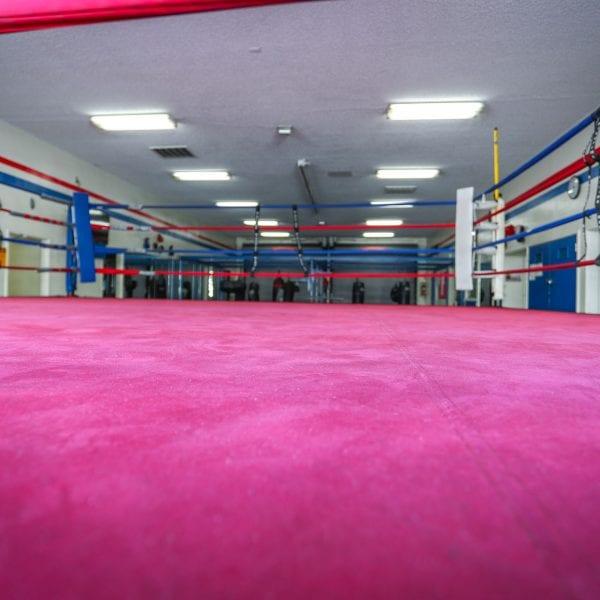 Boxing ring 1