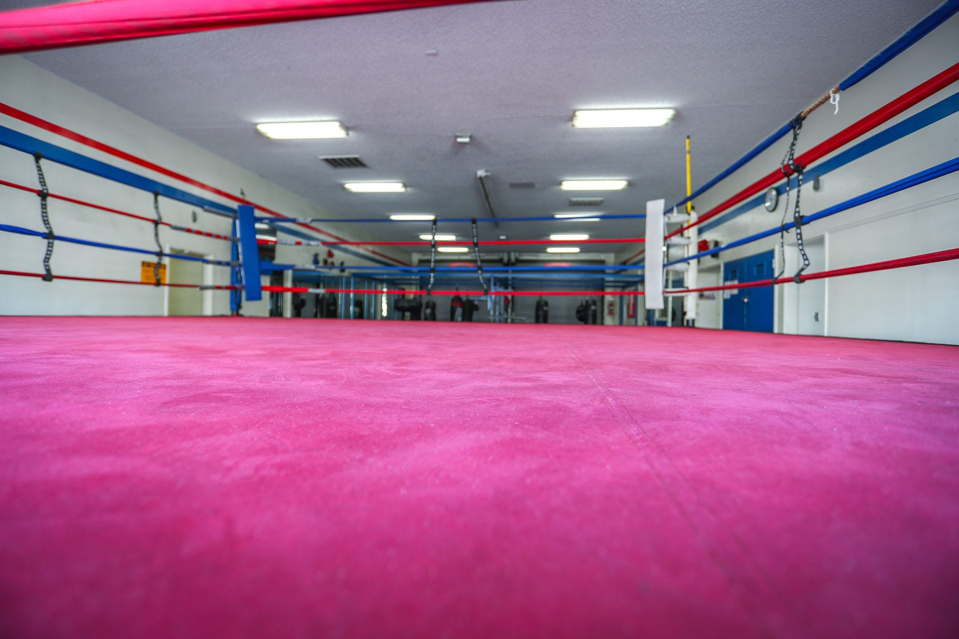 Boxing ring 1