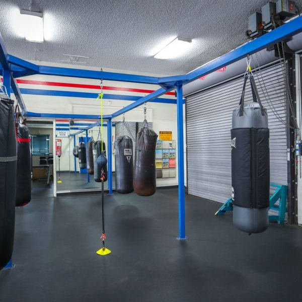 Punching bags in the gym 2