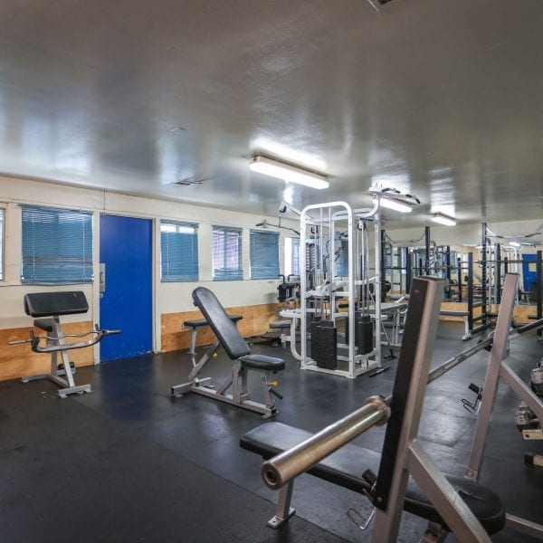 Exercise equipment in the gym