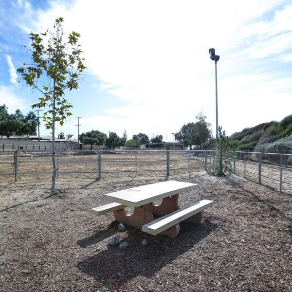 Picnic table in a fenced off area