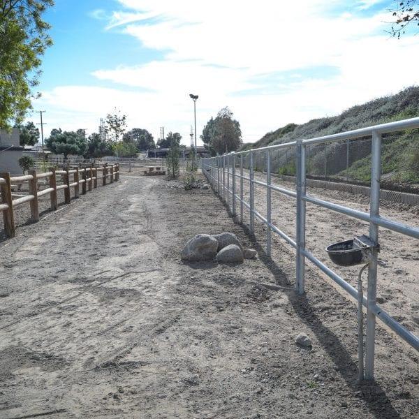 Track through the equestrian park