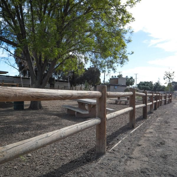 Picnic tables throughout the equestrian park