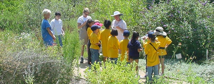 LA County volunteer with children on nature walk