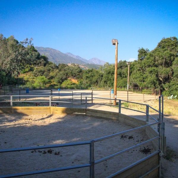 Fenced off horse training area