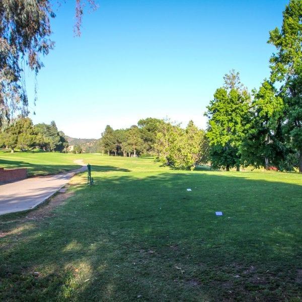 Paved path through green field