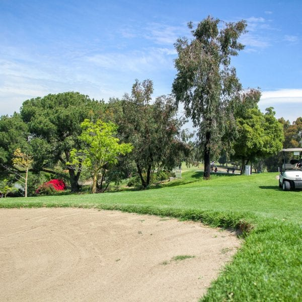 Green, sand trap and golf cart
