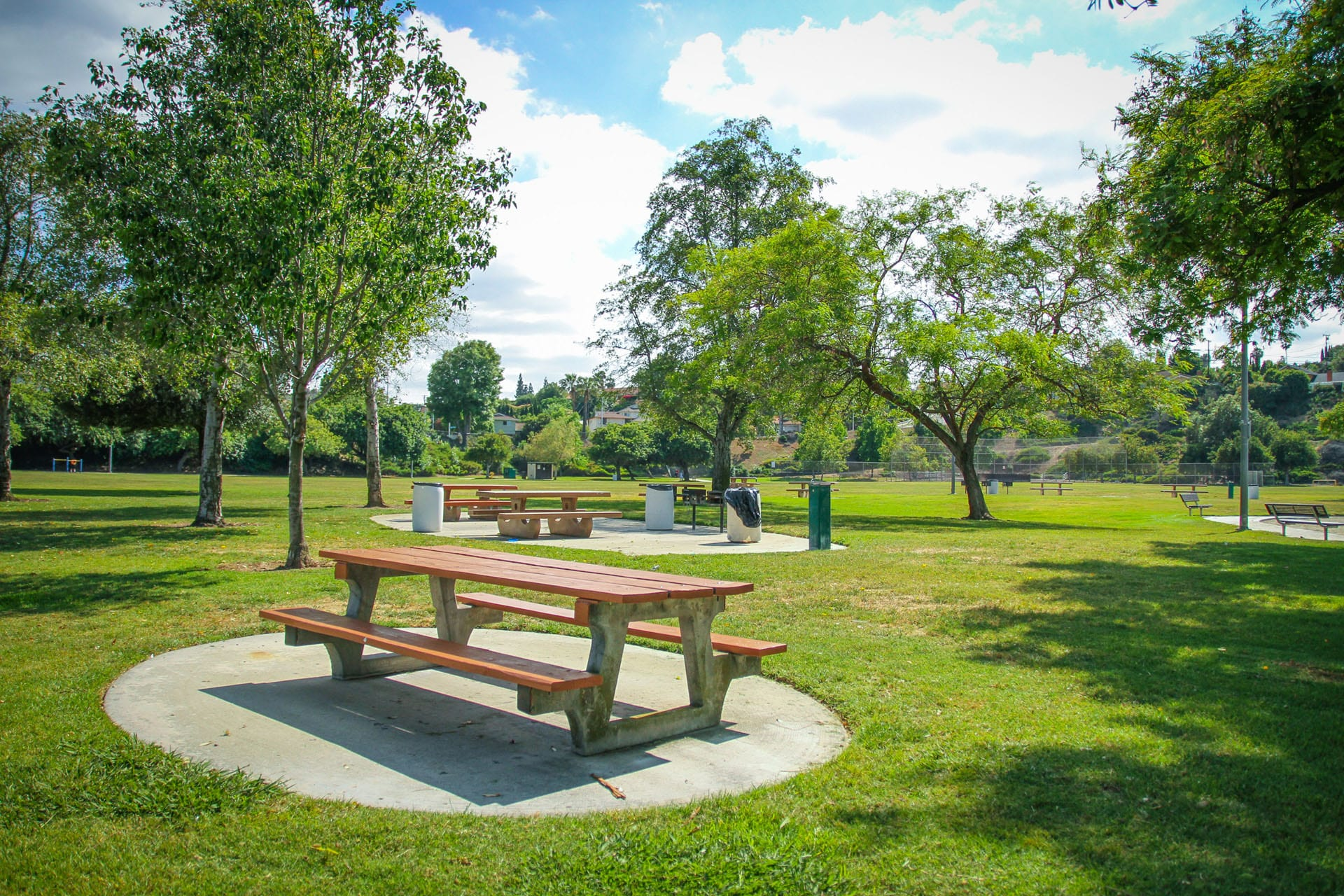 Picnic tables, grills and trash cans