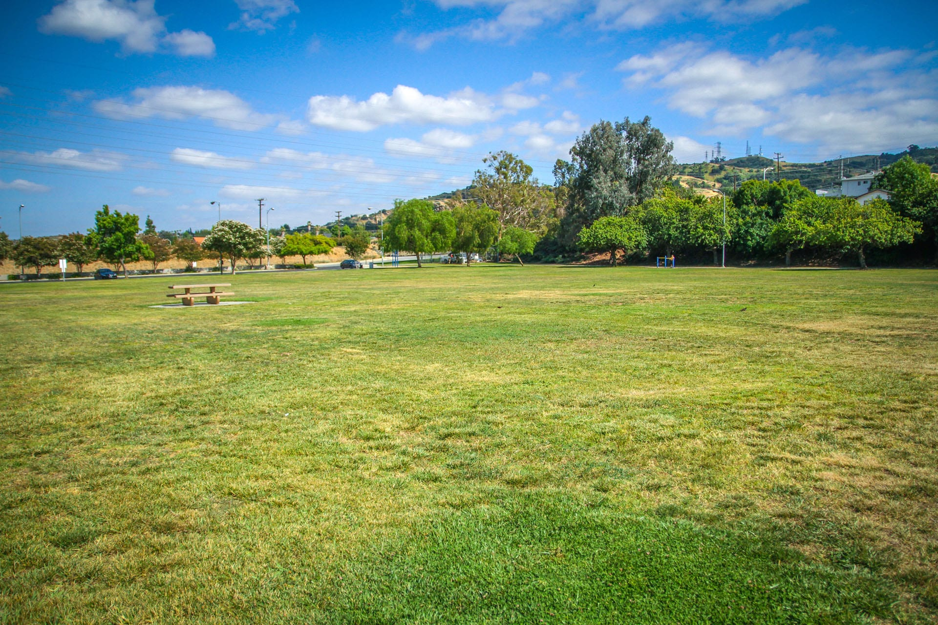 Wide open grass field with picnic table