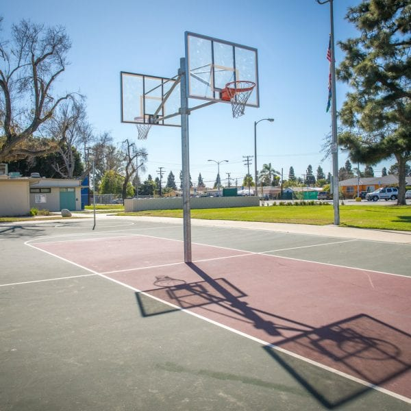 Hoops in a basketball court