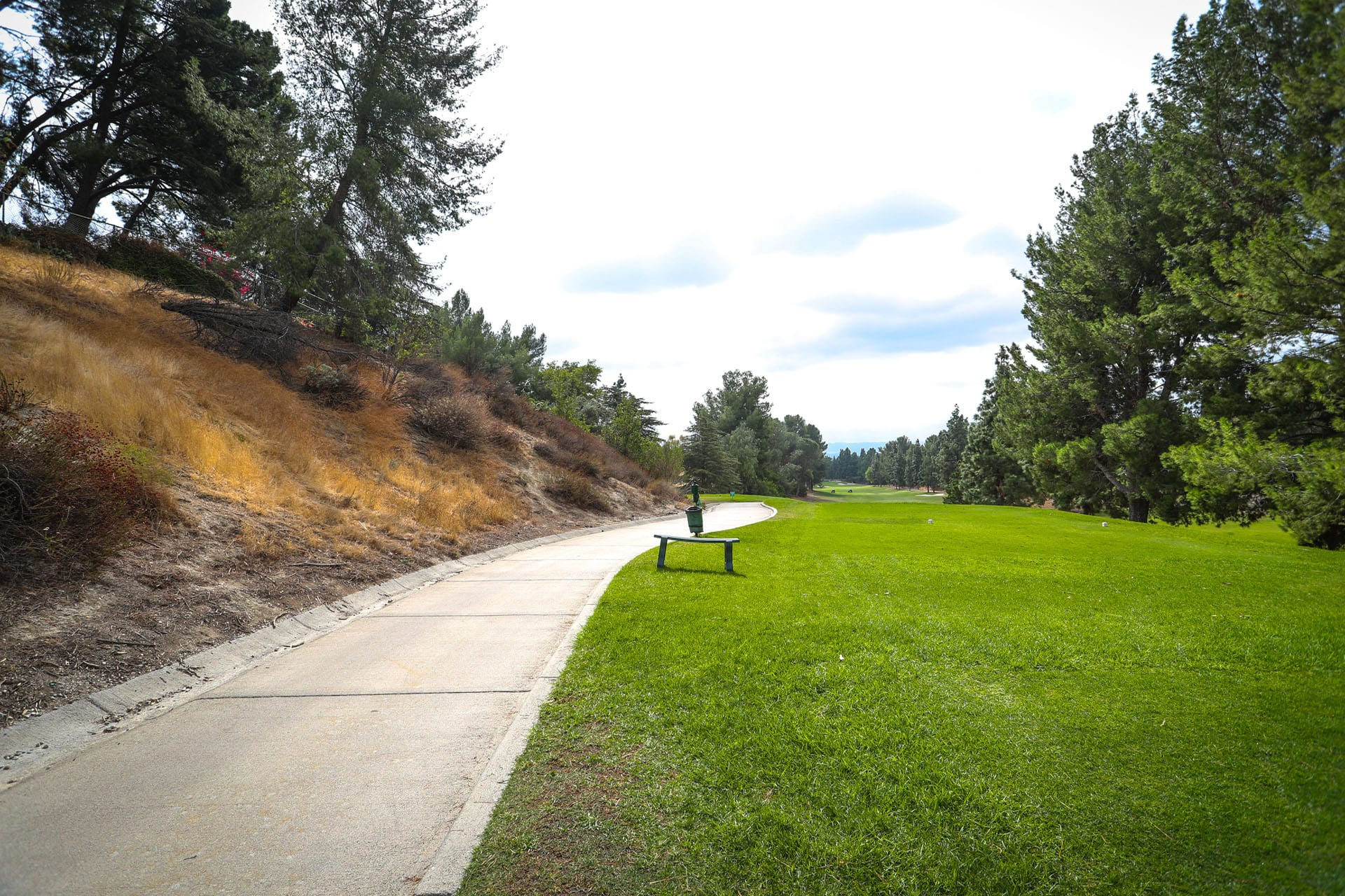 Golf cart path to the left of grass
