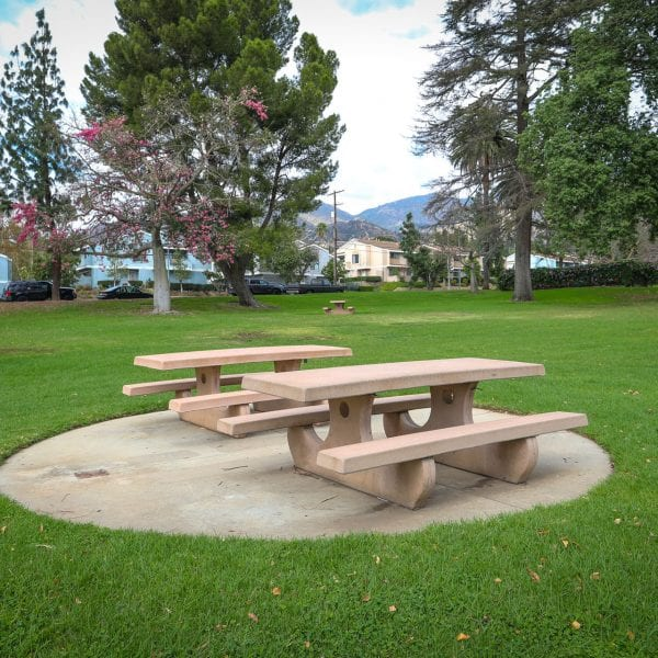 Picnic tables in the grass