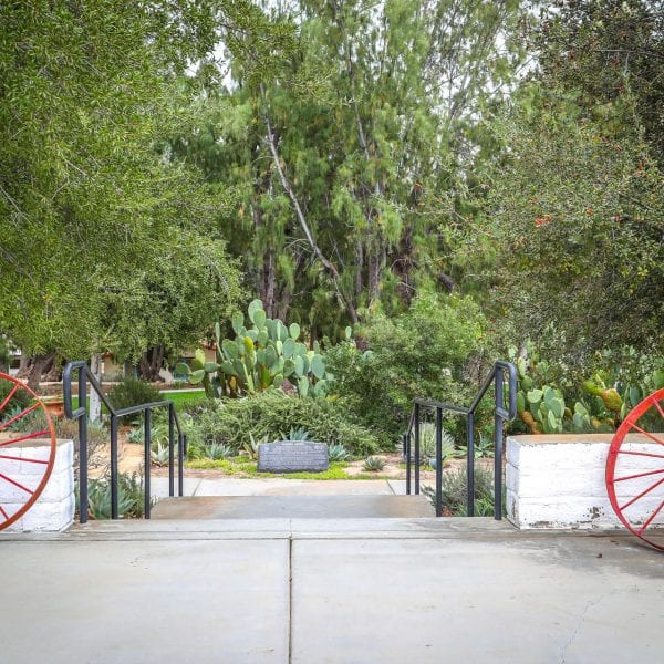 Two red wagon wheels, stairs and a flourishing garden