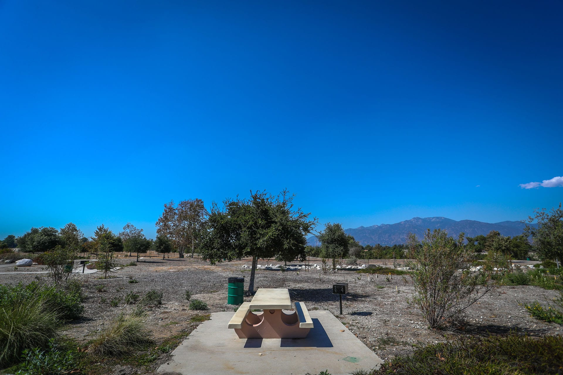 Picnic table, BBQ grill and trash can among trees, shrubs and a vibrant blue sky
