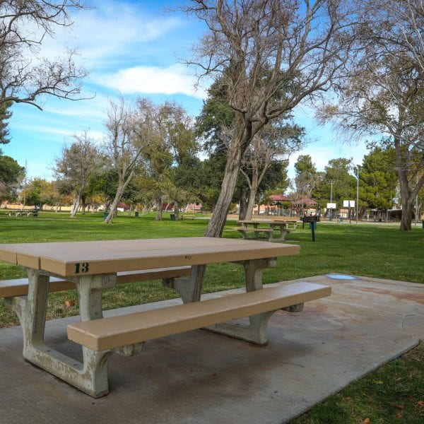 Picnic tables and BBQ grills scattering the park