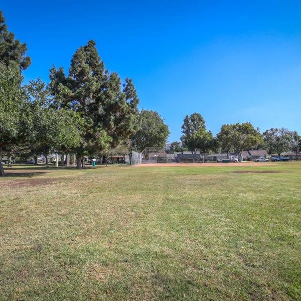 Open grass field, optionally part of baseball field