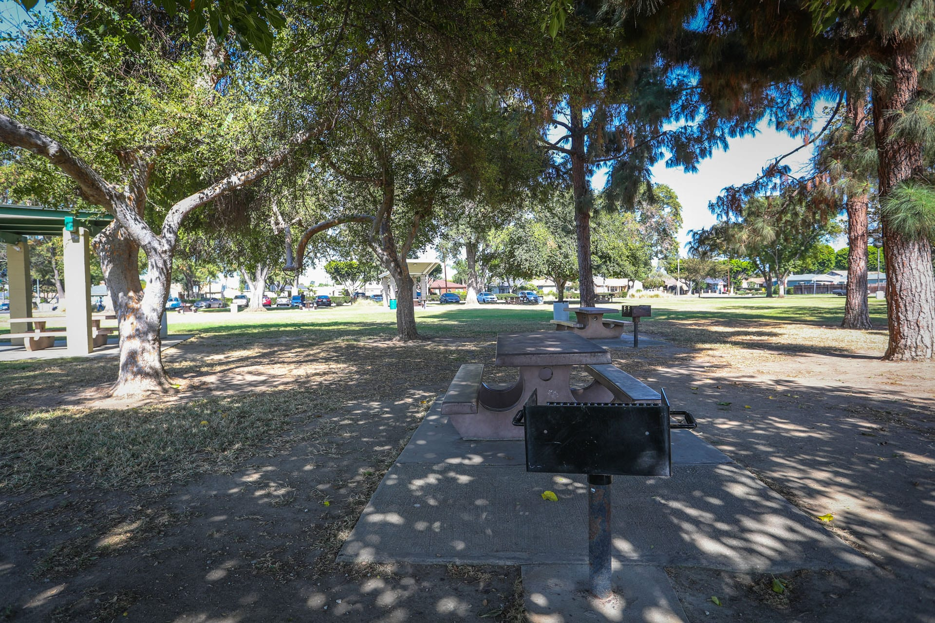 Picnic tables and BBQ grill under the trees