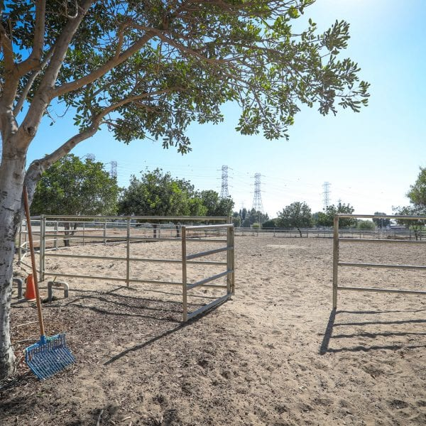 Gate in fence surrounding horse obstacle course
