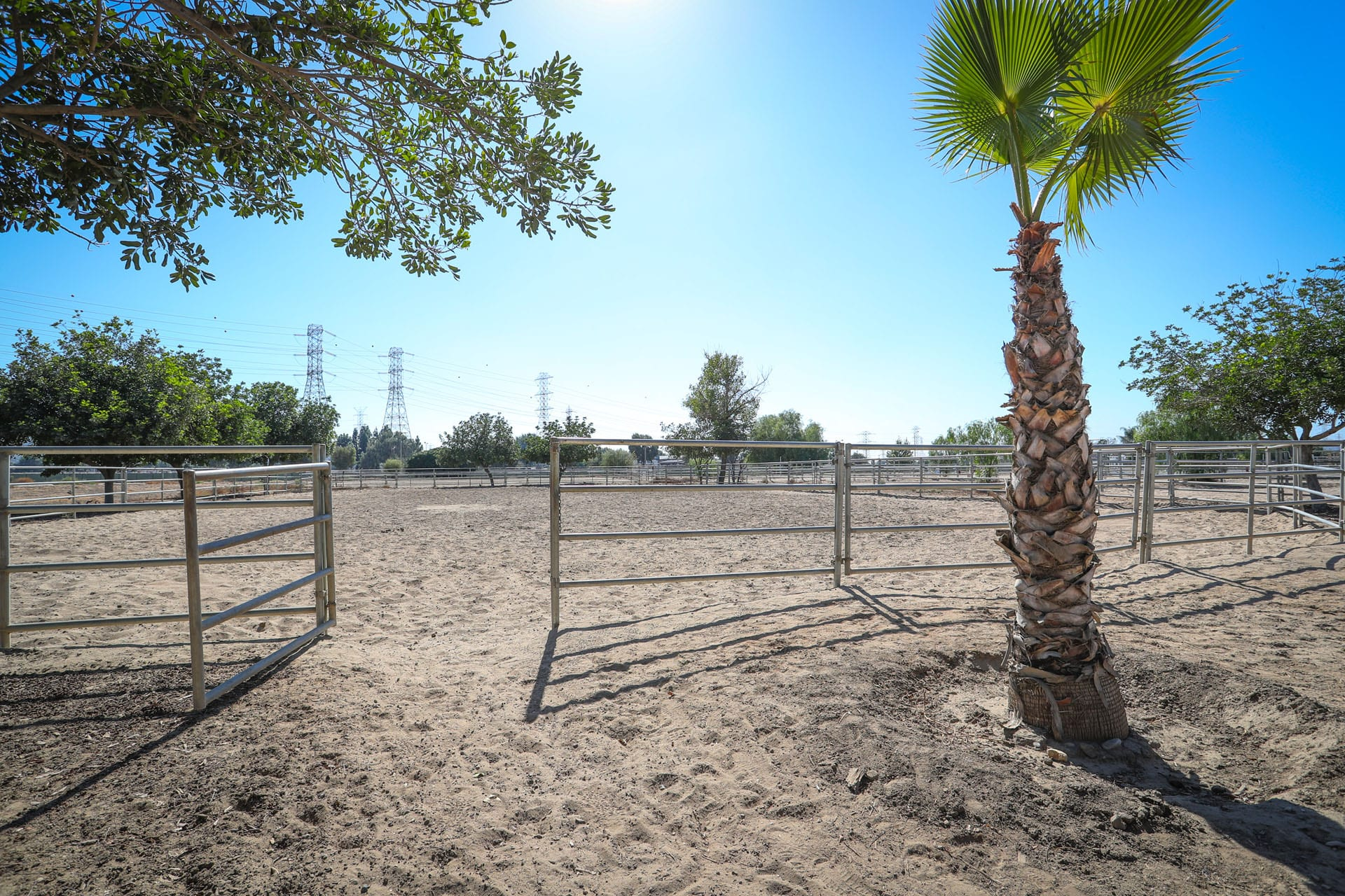 Gate to horse obstacle course